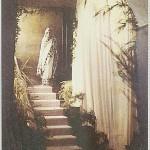 annai_walking_down_stairway
